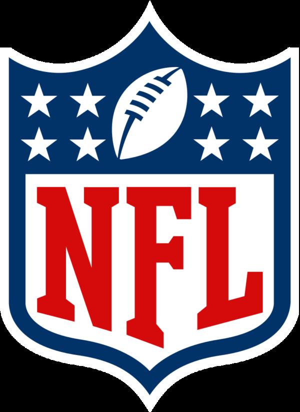 NFL Stadiums Flag